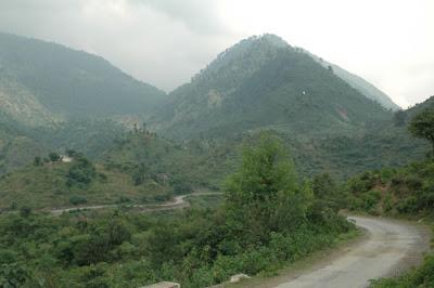 Lush Green Mountain