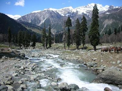Picturesque Mountain View - Shiv Khori