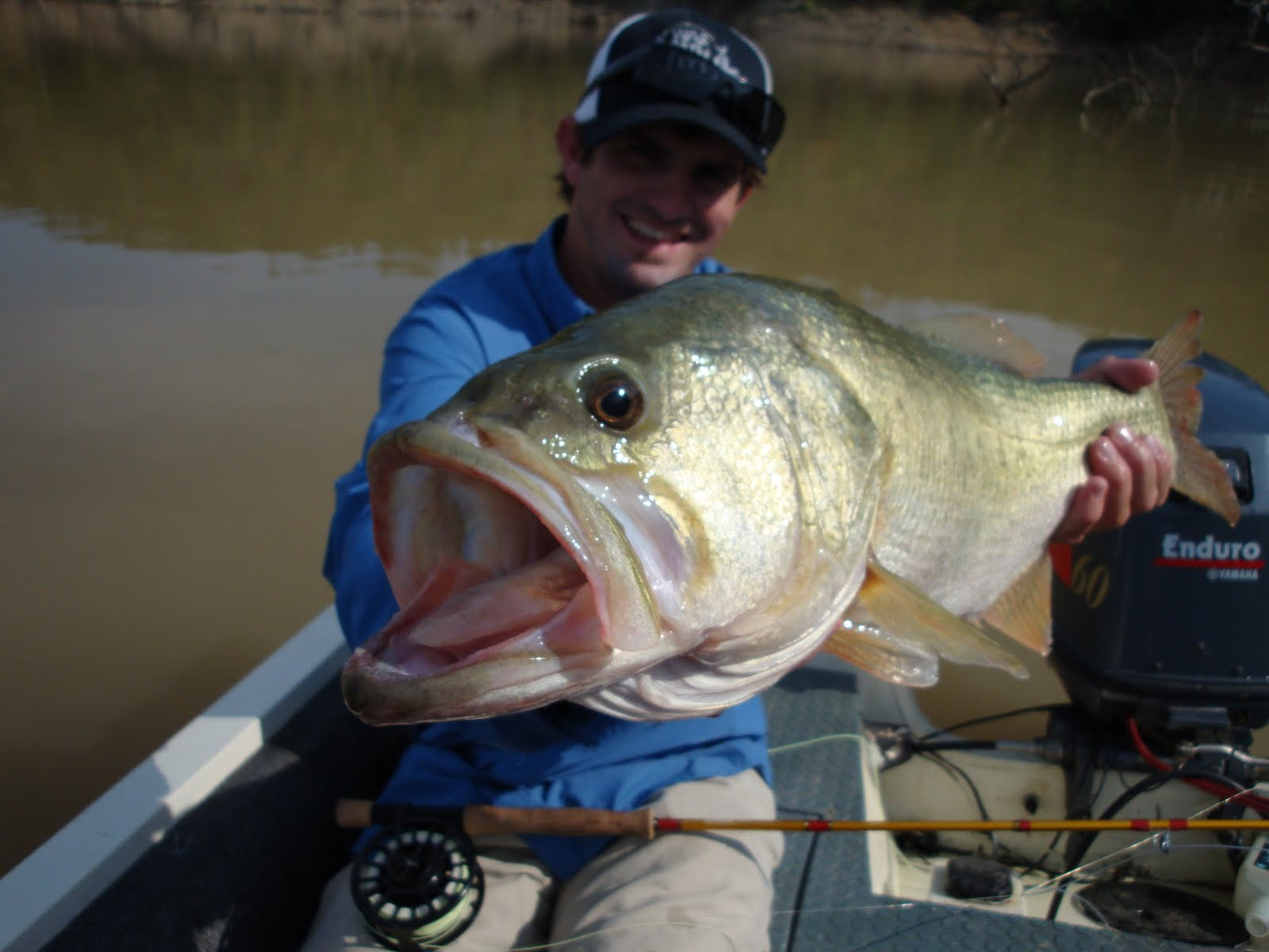 Burl fish youv gatta big mouth for Big mouth fish