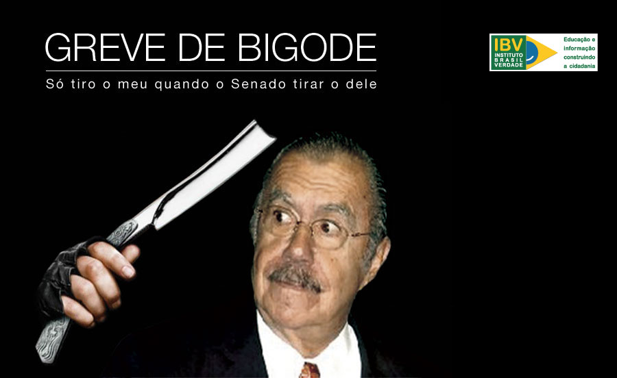 Greve de Bigode