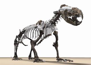 Mundo Troodon: Cosas que estremecieron el paleomundo: 2009