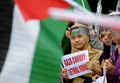 """Países """"latinoamericanos"""" codenan el ataque israelí a la flotilla humanitaria"""