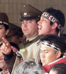 Comunicado de la Alianza Territorial Mapuche