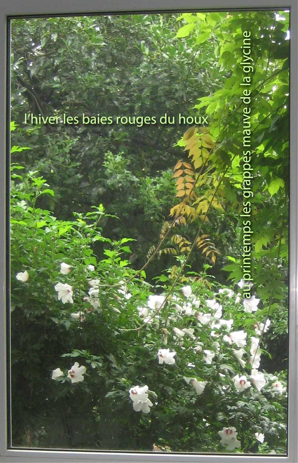 Chronique du jardin de la patrie d 39 une fen tre sur rue for Fenetre sur rue