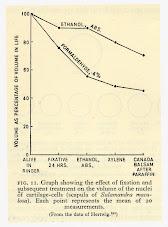 Fijación de la muestra: efecto de contracción.
