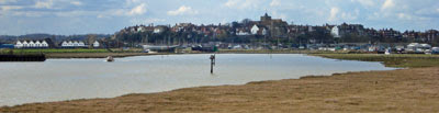 Rye, from the eastern marshes