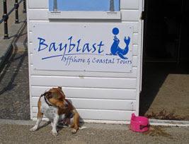 Bayblast HQ (a Herne Bay hut)