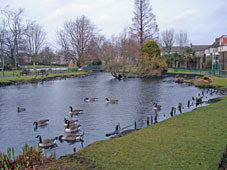 Waddon Ponds