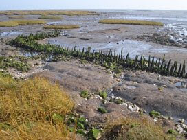 Canvey old sea wall, at Canvey Point