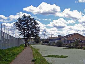 IBC fence / Leabank Square