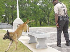 POLICE K-9 JUMPING OVER A VETERAN INSCRIBED BENCH IN HERITAGE PARK!