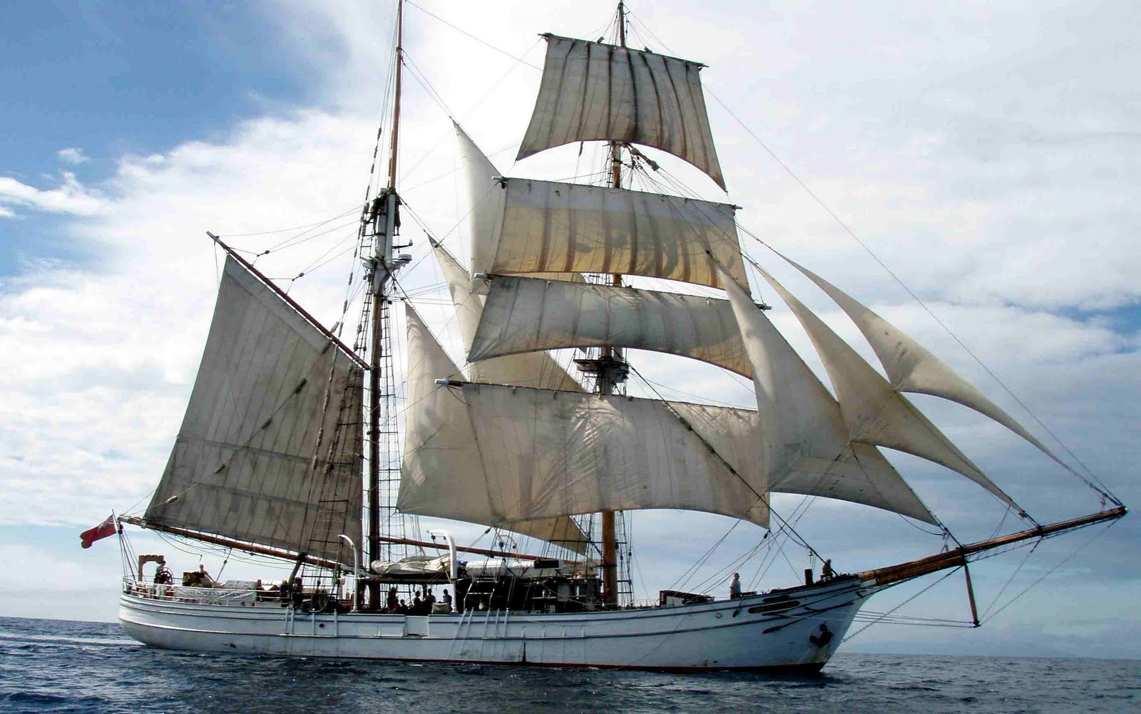 tall ship voyage sydney to auckland