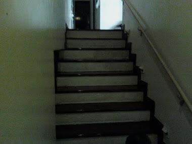 Escada Sintecada