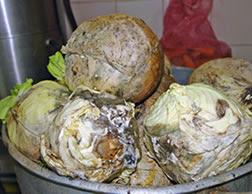 Los cardenales agosto 2009 for Cambios quimicos en la cocina