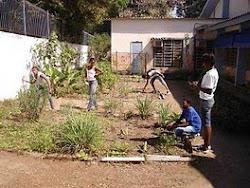 Horta e pomar escolar
