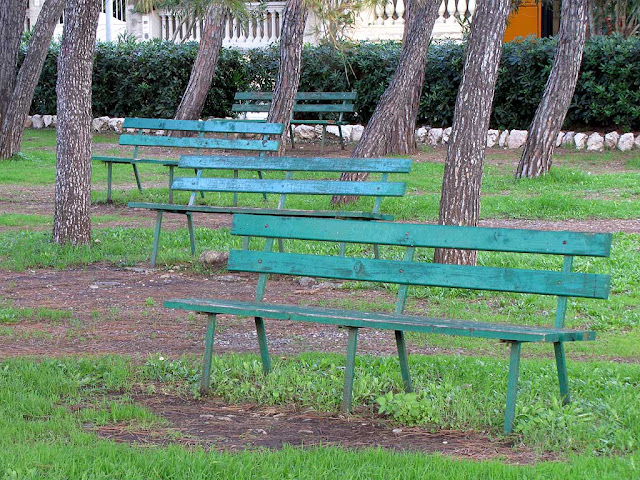 Benches midst the pines, Viale Italia, Livorno