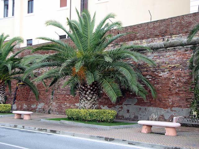 Benches inside the Porto Mediceo, Livorno