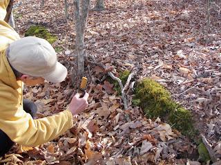 lady taking photo of moss on hillside