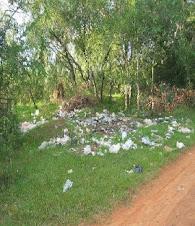 Zonas verdes contaminadas