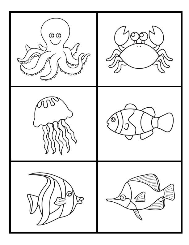 Insane image with regard to free printable ocean worksheets