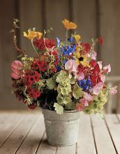 Cowboy Roses