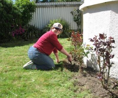 Sarah Stewart Being A Responsible Gardener
