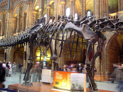 A more detailed view of the dinosaur skeleton in the central hall of the Science Museum in London
