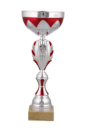 torneio de futsal inter associações de sangue de portugal Évora 2009