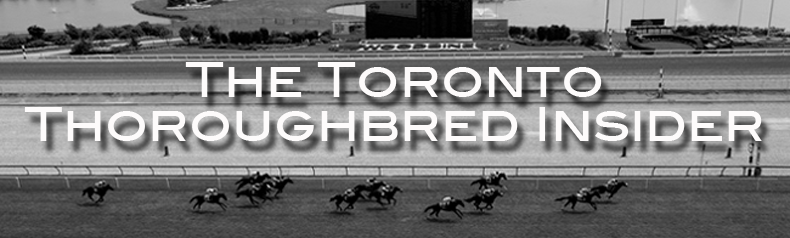 The Toronto Thoroughbred Insider