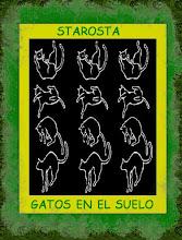 GATOS EN EL SUELO