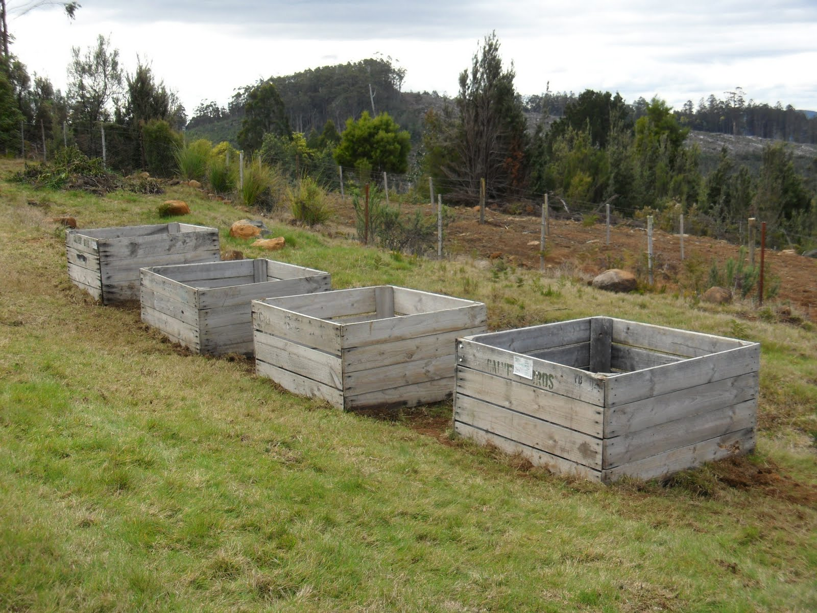 Huon view apple crates in place for Used apple crates