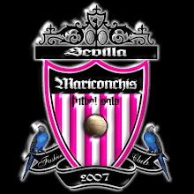 Escudo insigne de nuestro equipo