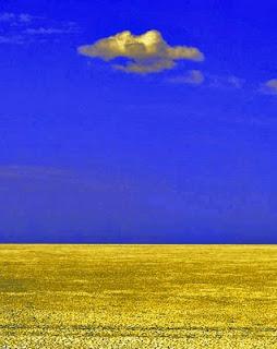 África paisagem photo foto