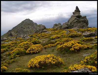 Un poco de naturaleza y monta as 14 06 2009 xxxviii - Zapatero poco fondo ...