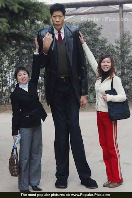world+tallest+man
