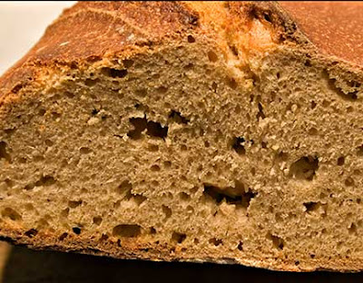 Crumb of Sourdough Whole Wheat Bread