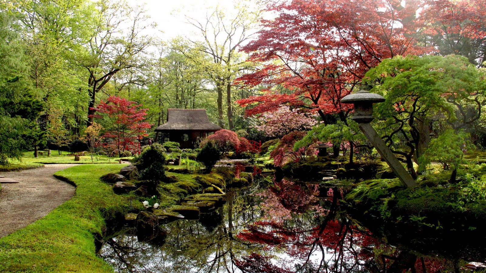 aronaeveryday perfection in the japanese garden
