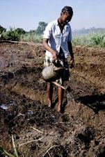 Modernizing rural agriculture