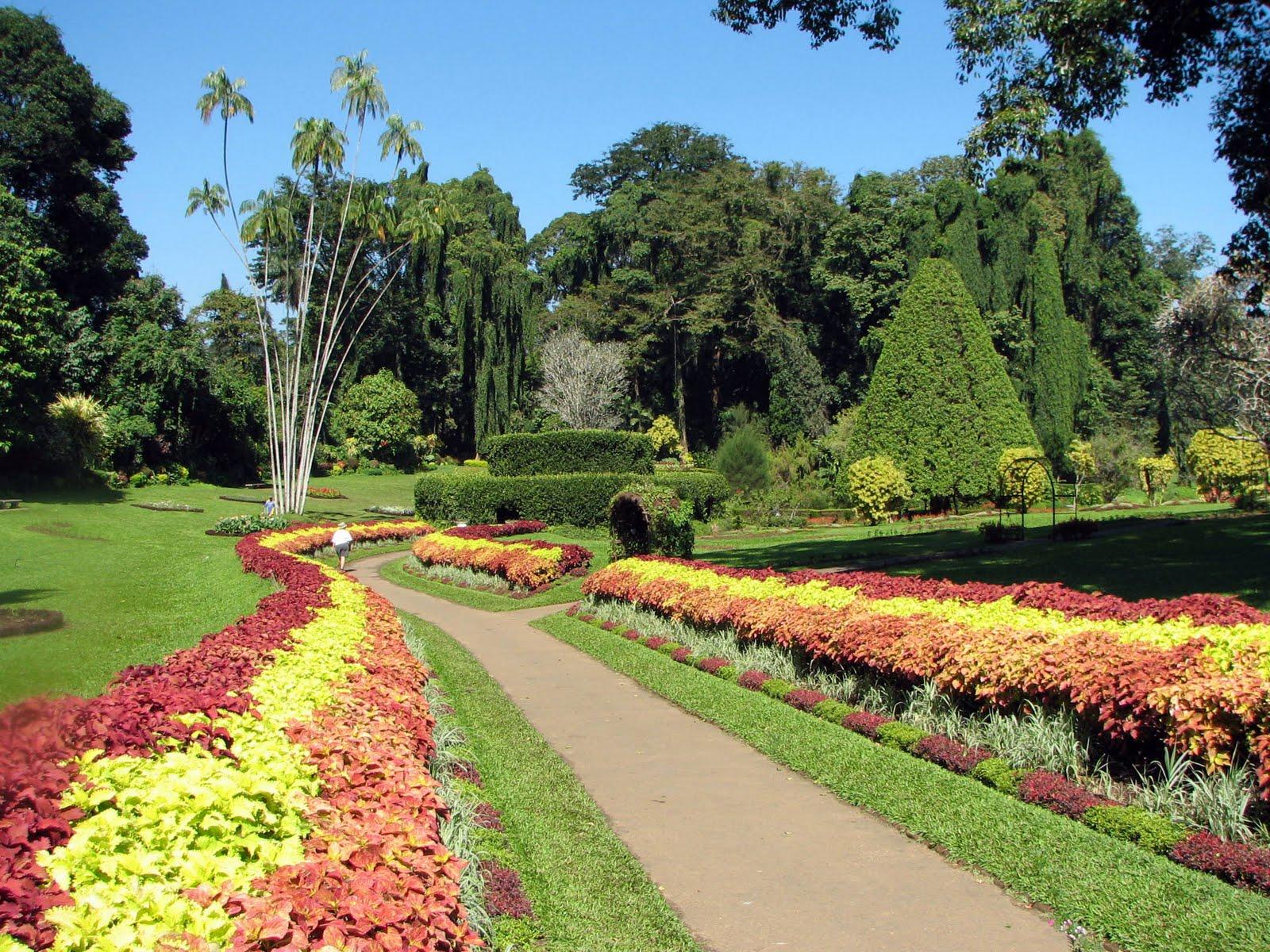 Travel sri lanka travel sri lanka peradeniya botanical for Garden