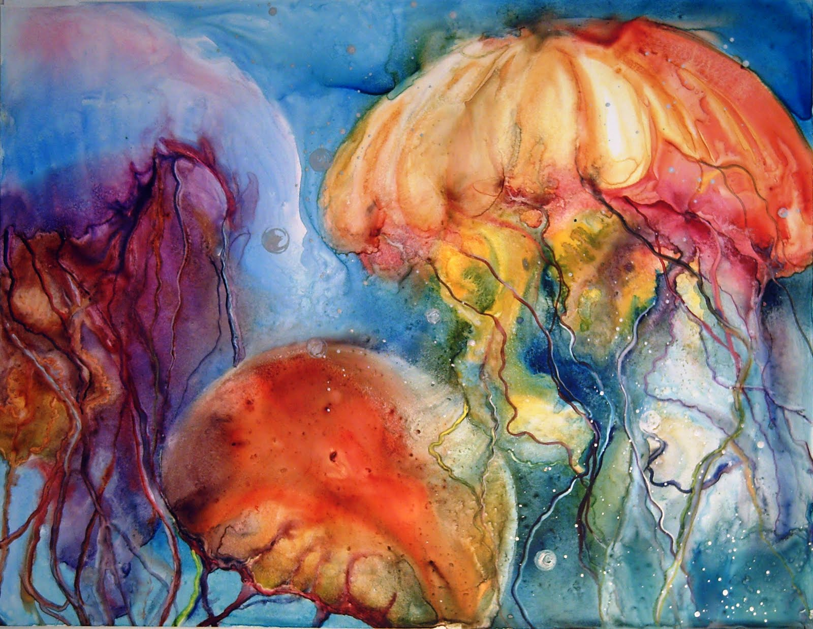 Donna maclure watercolors may 2010 for Jelly fish painting