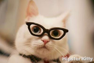 hipster cat, glasses cat, hip cat