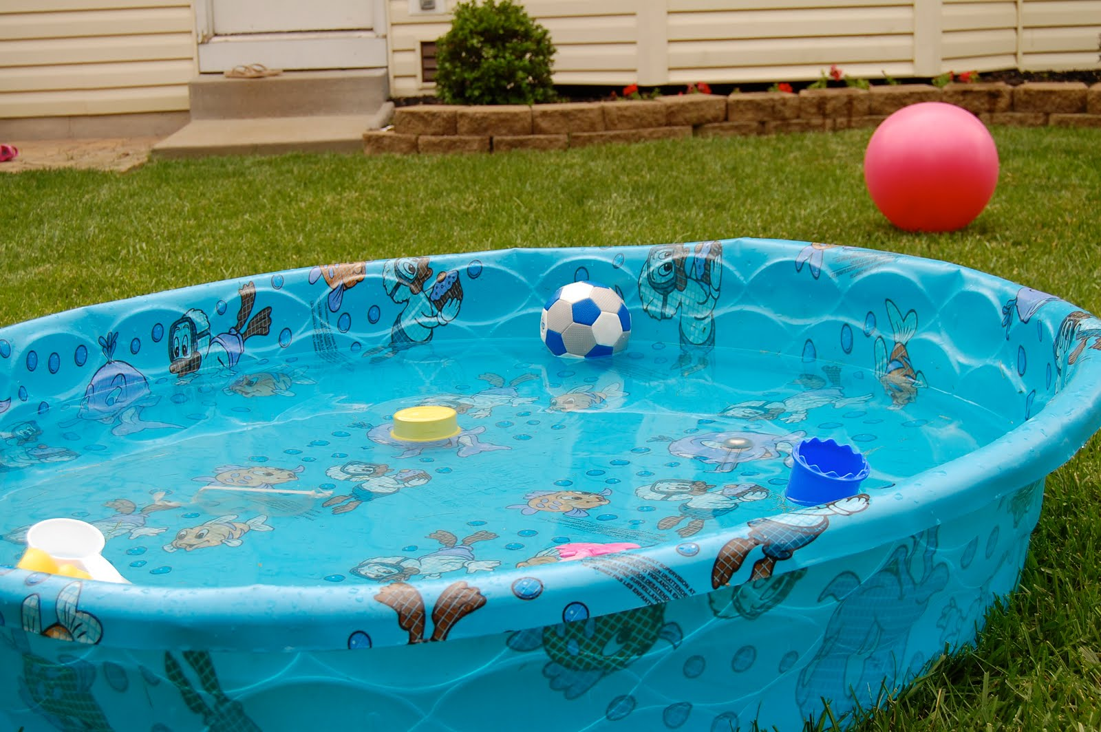 Hard Plastic Pools For Kids The Image Kid Has It