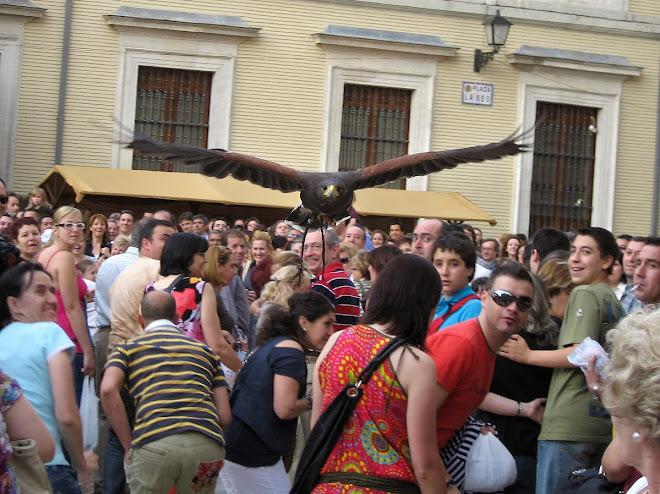 Mercado Medieval de las tres culturas 2009, Plaza de La Seo (ZGZ)