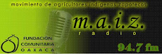 Radio Maíz