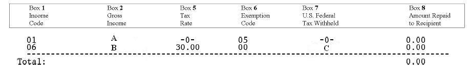 profits tax return 中文 版