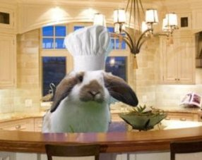 I'm the cheff Bigotes!!!