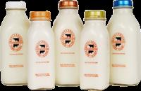 Ronnybrook milks