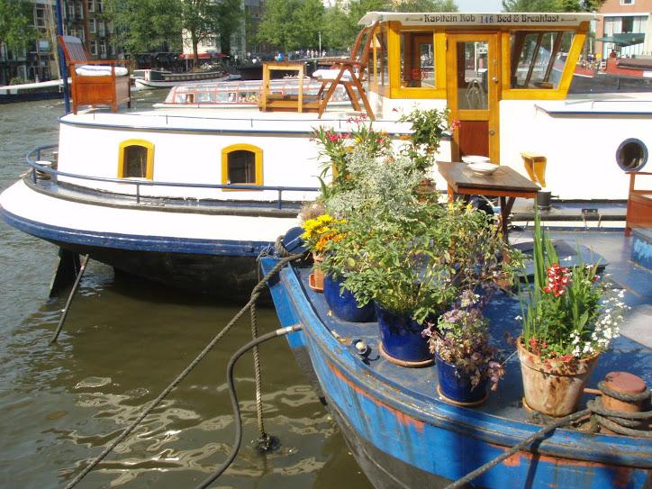 NOVO BLOG DA NECA (Só fotos de viagens pelo MUNDO)www.necanomundo.blogspot.com