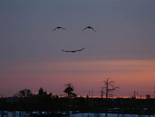 a smile from mother nature