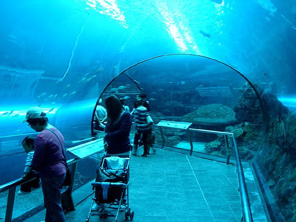 taiwan national museum of marine biology & aquarium